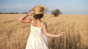 Tracking footage of a beautiful girl in white summer dress and straw hat running freely by wheat field. Backside view stock video footage