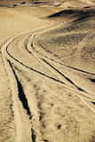 Tracking in gobi desert Stock Photography