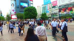 Tracking shot of around dog Hachiko in Shibuya Tokyo Japan stock video