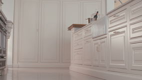 Tracking shot of a luxury kitchen stock footage