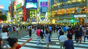 Tracking shot of scramble crossing in Shibuya Tokyo Japan at dusk