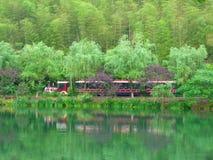 Trackless τραίνο τουριστών που ταξιδεύει μέσω του δάσους Στοκ εικόνα με δικαίωμα ελεύθερης χρήσης