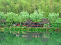 Trackless tourist train traveling through the forest Royalty Free Stock Image