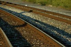 Tracks. Railway tracks Stock Photo