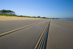 Tracks on the Beach Royalty Free Stock Photography
