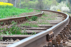 Tracks. In big detail and depth of field next to the oil-seed rape Royalty Free Stock Photography