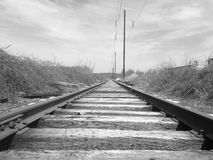 Tracks. In Black and white Royalty Free Stock Photos