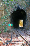 Tracks Entering Tunnel Royalty Free Stock Images