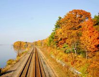Tracks in the fall Stock Image