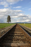 Tracks through the field. Railroad tracks lead through a farm field in north Idaho Royalty Free Stock Photography