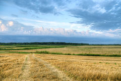 Tracks in the field hdr Royalty Free Stock Photography