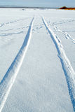 Tracks In Snow Royalty Free Stock Photo