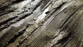 Tracks in the mud Stock Photos