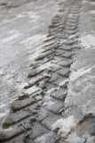 Tracks in Mud 8 Royalty Free Stock Photo
