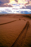 Tracks in sand Stock Images