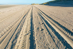 Tracks in the sand of the beach Royalty Free Stock Photography