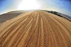 Tracks on sand Stock Photography