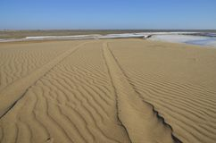 Tracks on a sand dune. Stock Image