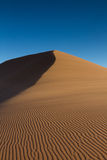 Tracks on a sand dune Royalty Free Stock Photo