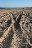 Tracks on the sand Royalty Free Stock Image