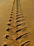 Tracks in the sand. Tracks of wheel tractor in the sand of the beach stock photo