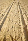 Tracks on a sandy beach Stock Image