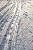 Tracks of sleigh Royalty Free Stock Image