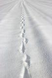 Tracks in the snow Stock Photos