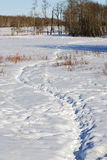 Tracks on snow field Stock Photo