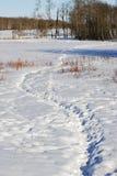 Tracks on snow field Stock Photo