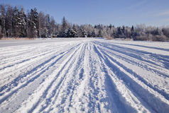 Tracks on snow Royalty Free Stock Images