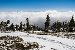 Tracks on the snow on Mount San Antonio (Mt Baldy) showing the hiking trail direction; white clouds in the background covering the. Forest and the valley, Los stock images