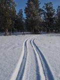 Tracks through snow to trees Stock Photo
