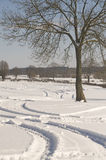 Tracks in snowy landscape Stock Photo