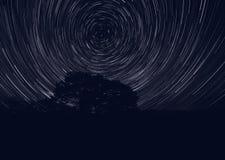 Tracks of stars in sky Stock Photography