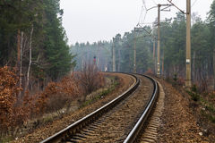 Tracks turn left. Railway track in the forest. Long way. Travel. Tracks turn left. Railway track in the forest royalty free stock photos
