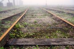 Tracks Under Fog Paranapiacaba Brazil Stock Images
