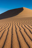 Tracks of Wind on a sand dune Royalty Free Stock Image