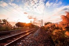 Trackscape Stockbilder