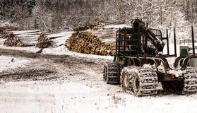 Tracktor di silvicoltura parcheggiato Fotografie Stock Libere da Diritti