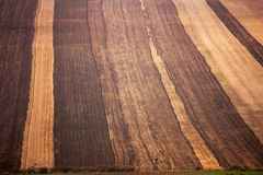 Tract of land in fall Stock Images