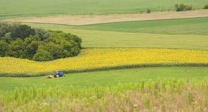 Tracteur au champ a Photographie stock libre de droits