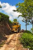 Tracteur avec des feuilles de thé à la plantation de thé après le jour ouvrable Photo libre de droits