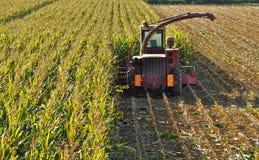 Tracteur avec la machine de batteuse à un milieu d'un gisement de maïs, moitié moissonnée image libre de droits