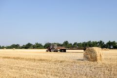 Tracteur avec le foin Le foin de transport de tracteur Balles de foin empilées dans le chariot Images libres de droits