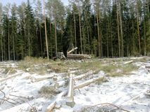 Tracteur chargeant le bois Images libres de droits