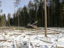 Tracteur chargeant le bois Photo stock