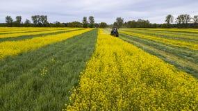 Tracteur dans le domaine, agriculture au printemps photos stock