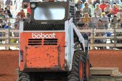 Tracteur de chat sauvage Images stock