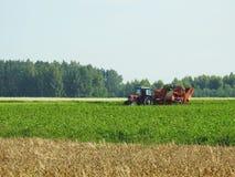 Tracteur fonctionnant dans le domaine de pomme de terre, Lithuanie Image libre de droits